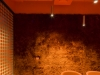 04_orange room